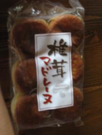 Shitake_3