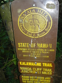 Hawaii_141