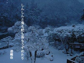 shinshin_014