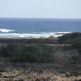 オアフ島-マカプウ岬付近の海岸