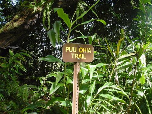 トレイルの名前